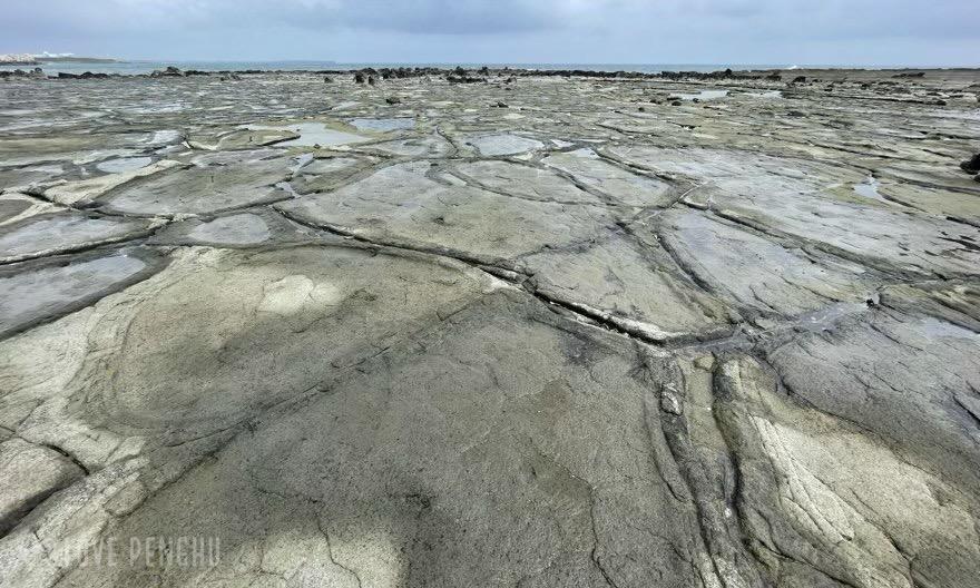 澎湖の潮間帯